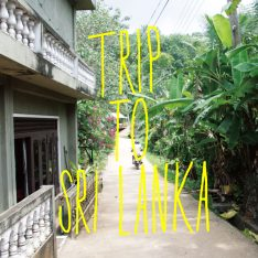 TRIP TO SRI LANKA 2017. 8.25(金)- 9.21(木)